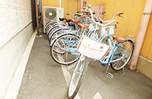 Free bicycle rental